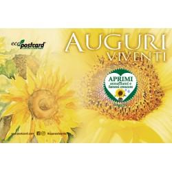 Eco-Postcard cartolina Auguri Viventi con semi Girasole