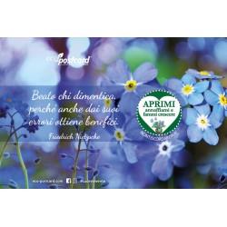 Eco-Postcard con citazione di Friedrich Nietzsche