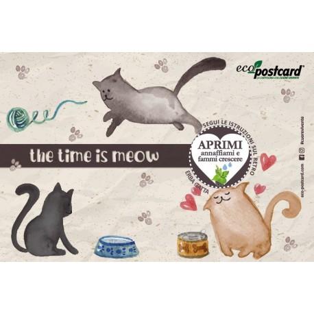 Eco-Postcard gatto felice - erba gatta