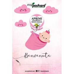 Eco-Postcard di Auguri per la nascita di una bambina - Viola del pensiero