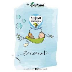 Eco-Postcard di Auguri per la nascita di un bambino - Viola del pensiero