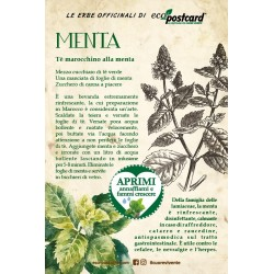 Eco-Postcard Pianta officinale - Menta