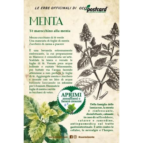 Eco-Postcard Pianta officinale - Menta