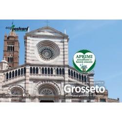 Eco-Postcard Turistica di Grosseto - Cattedrale di San Lorenzo - Girasole