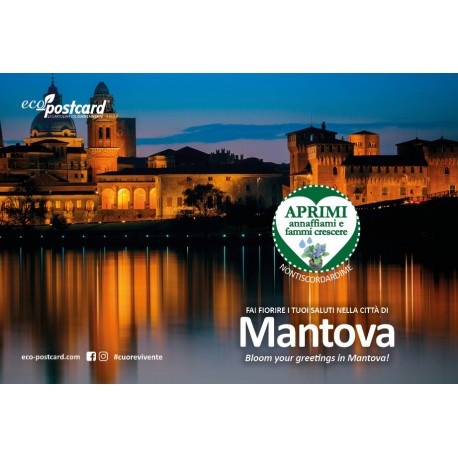 Eco-Postcard Turistica di Mantova - Ipomea