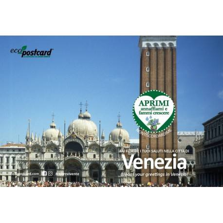 Eco-Postcard cartolina souvenir Piazza San Marco Venezia - Ipomea