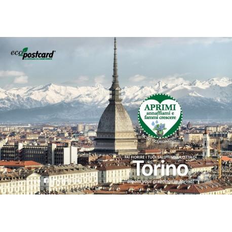 Eco-Postcard cartolina souvenir Mole Antonelliana - Ipomea
