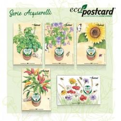 Eco-Postcard Serie 5 Cartoline ecologiche Acquerelli