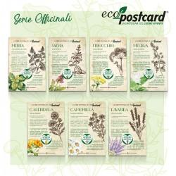 Eco-Postcard Serie 5 Cartoline ecologiche con Ricette