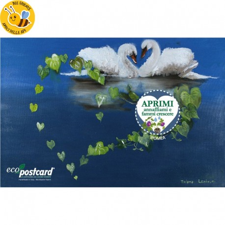 Eco-Postcard Auguri Cigni Tiziana Leobruni