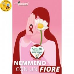 Eco-Postcard No violenza sulle donne_Nemmeno con un fiore - Margherita