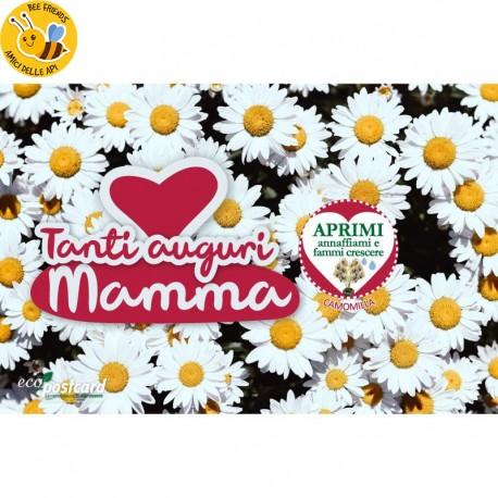 Eco-Postcard Auguri Festa della Mamma bambino