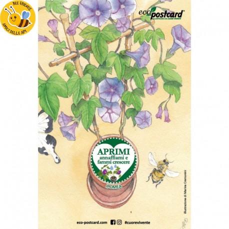Eco-Postcard cartolina illustrazione ad acquerello - Ipomea