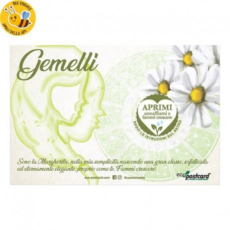 Eco-Postcard zodiaco Gemelli - margherita