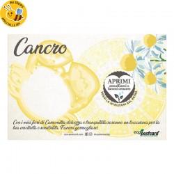 Eco-Postcard zodiaco Cancro - camomilla