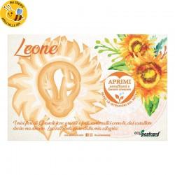Eco-Postcard zodiaco Leone - girasole
