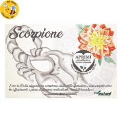 Eco-Postcard zodiaco Scorpione - dalia
