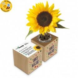 Eco-Woody - Tanti Auguri - Cubo di legno con semi di Girasole