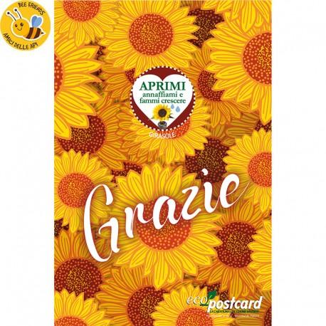 Eco-Postcard - Biglietto Cartolina di Ringraziamento Ecologica con pianta di Morning Glory