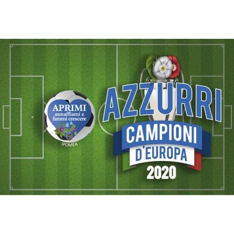 Eco-Postcard - Biglietto Cartolina Campioni calcio Europa 2020