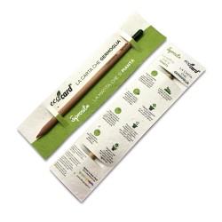 SPROUT ECO-CARD matita e segnalibro con semi piantabile con mina colorata