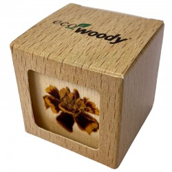 Eco-Woody - Cubo di legno 100% ecologico con semi di Tagete