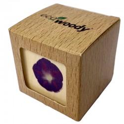 Eco-Woody - Cubo di legno con semi di Campanella Rampicante