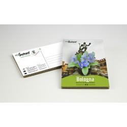 Eco-Postcard cartolina souvenir Fontana del Nettuno di Bologna | Con piantina