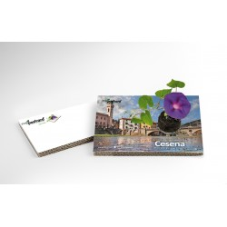 Eco-Postcard Turistica di Cesena | Con piantina