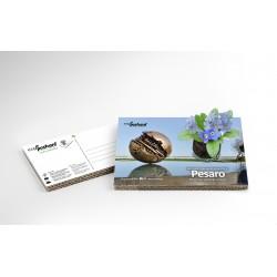 Eco-Postcard Turistica della Sfera Grande di Pesaro | Con piantina