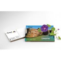 Eco-Postcard cartolina souvenir Fortezza Vecchia Livorno | Con piantina