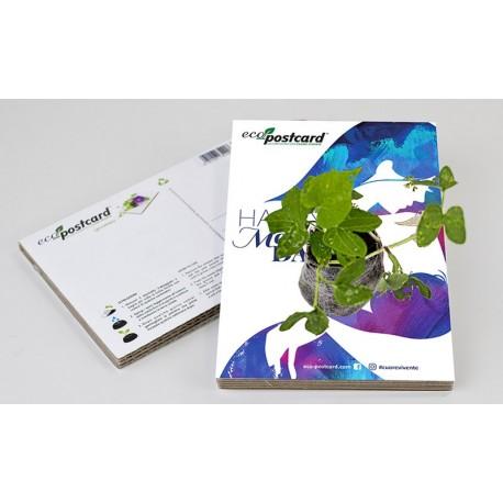Eco-Postcard di Auguri per la Festa della Mamma - IPOMEA | Con Piantina