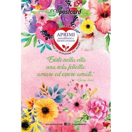 Eco-Postcard di auguri per San Valentino Citazione - Viola del pensiero