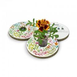 Eco-Decors Pallina ecologica Primavera fiori e foglie – Calendula