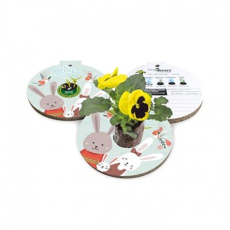 Eco-Decors decorazione ecologica Pasqua Conigli – Viola del pensiero