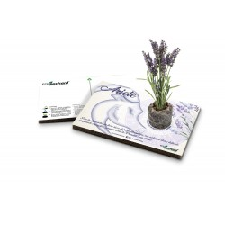 Eco-Postcard zodiaco Ariete - lavanda