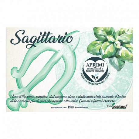 Eco-Postcard zodiaco Sagittario - basilico