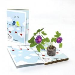 Biglietto d'auguri ecologico love - ipomea