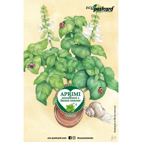 Eco-Postcard cartolina illustrazione ad acquerello - Basilico