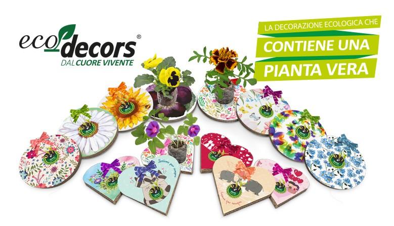 Scopri le nostre Eco-Decors